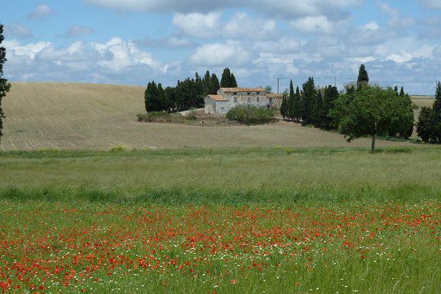 Languedoc-Roussillon, Aude, Cambieure