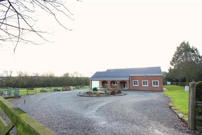 Thumbnail Detached bungalow for sale in Hall Lane, Donisthorpe