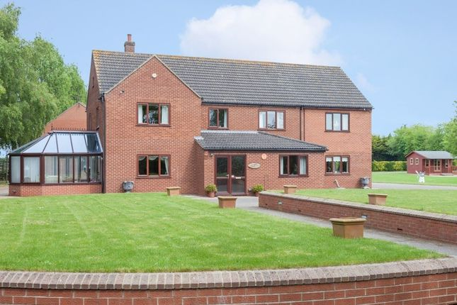 Thumbnail Detached house for sale in Mill Road, Foxley, Dereham