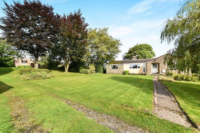 Thumbnail Detached bungalow for sale in Alton Lane, Littlemoor, Ashover, Chesterfield