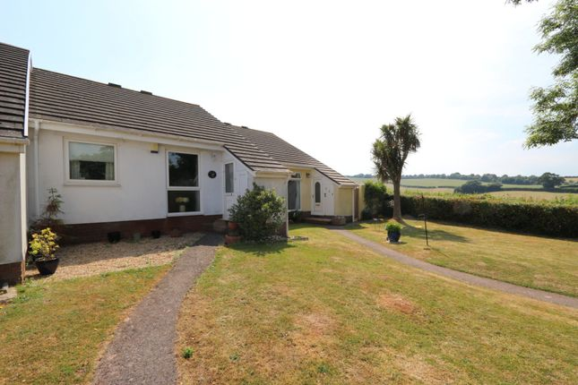 Thumbnail Bungalow for sale in Fowey Avenue, Torquay