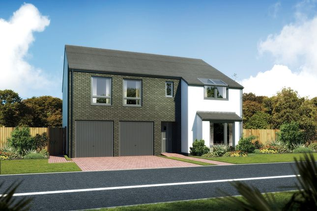 "Thumbnail Detached house for sale in ""Melton"" at Carron Den Road, Stonehaven"