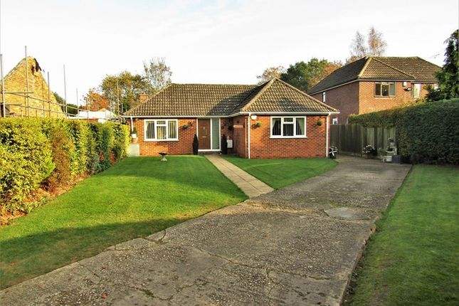 Thumbnail Detached bungalow for sale in Long Lane, Tilehurst, Reading