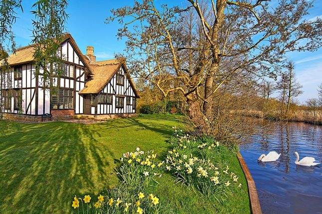 Thumbnail Detached house for sale in The Shoal, Irstead, Norwich