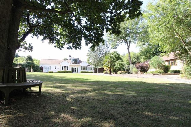Thumbnail Detached house for sale in The Chase, Ashingdon, Essex