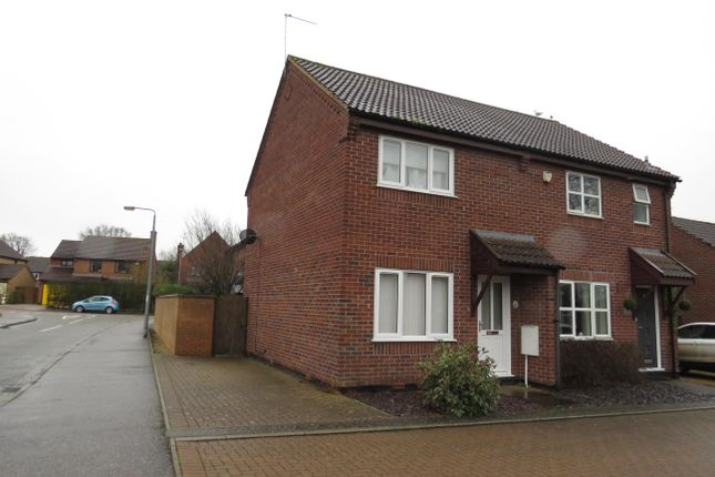 Thumbnail Property to rent in Homebred Lane, Loddon, Norwich