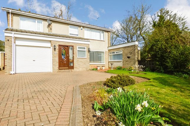 Thumbnail Detached house for sale in Lorimers Close, Peterlee