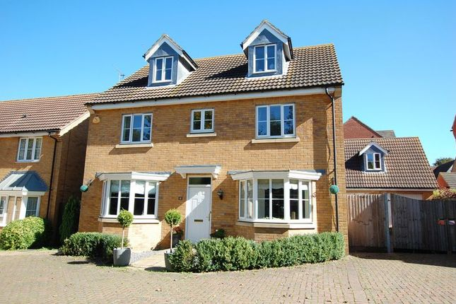 Thumbnail Detached house for sale in Daltons Shaw, Orsett, Grays