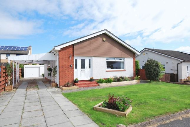 Thumbnail Detached bungalow for sale in 65 Briar Grove, Ayr