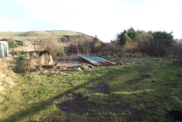 Garden of Nigg, Tain IV19