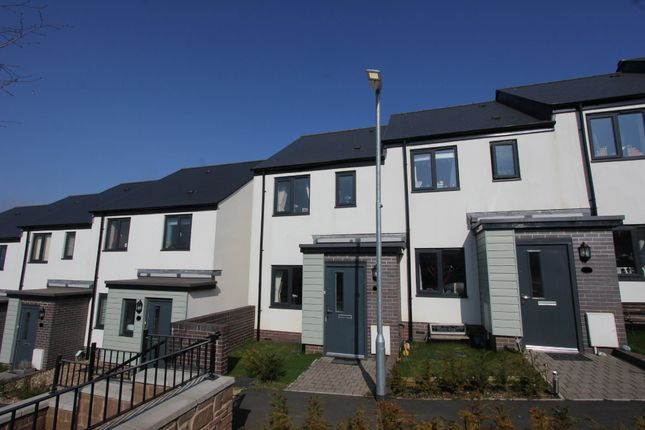 Thumbnail End terrace house for sale in Hollyhock Way, Paignton