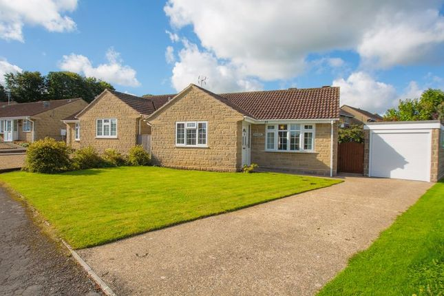 Thumbnail Bungalow for sale in Laburnum Crescent, Crewkerne