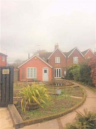 Thumbnail Semi-detached house to rent in Whitstable Road, Blean, Canterbury