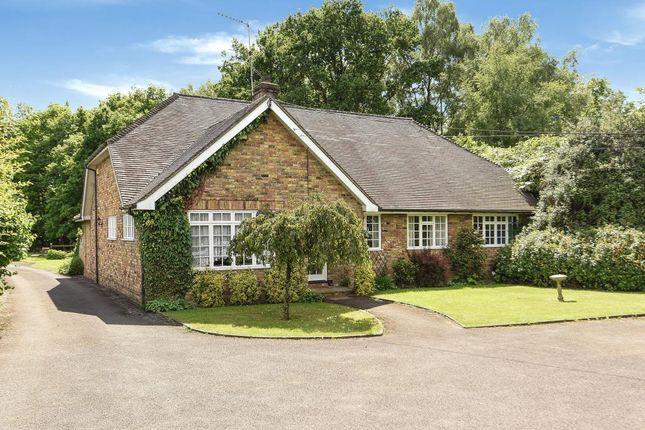 Thumbnail Detached bungalow for sale in Chobham, Surrey