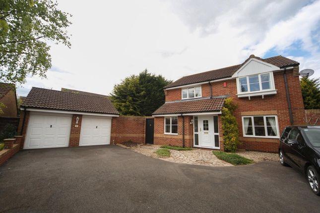 Thumbnail Detached house for sale in Alder Close, North Petherton, Bridgwater