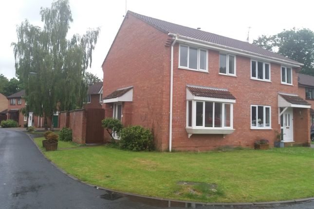 Thumbnail Semi-detached house to rent in Beech Close, Willand, Cullompton