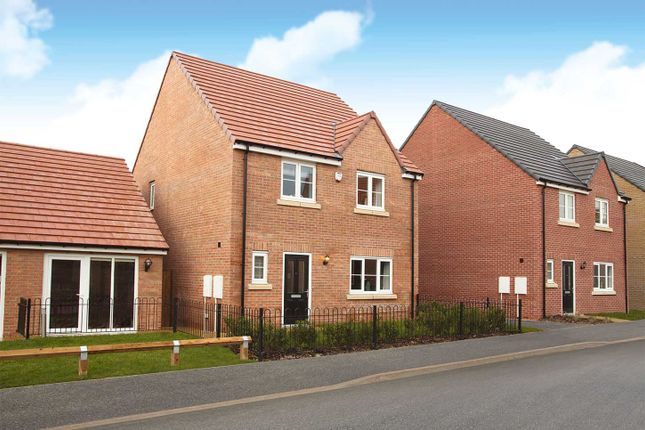 """Detached house for sale in """"The Mylne"""" at The Boulevard, Eastfield, Scarborough"""