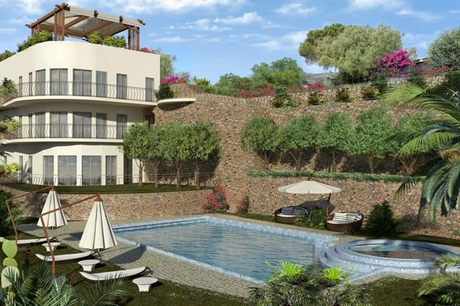 Property in Savona near the sea