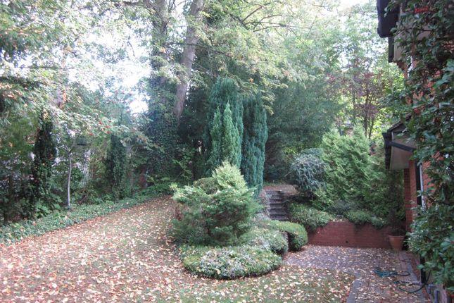 Bryony Front Garden 025