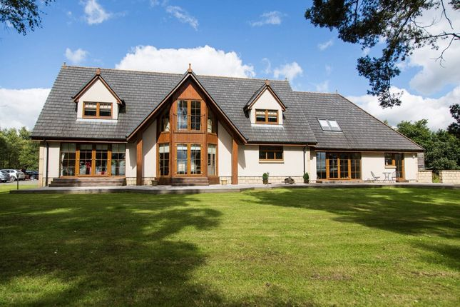 Thumbnail Detached house for sale in Larch Cottage, Scotlandwell