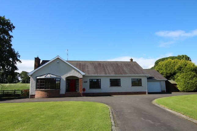 Thumbnail Bungalow for sale in Dromore Road, Hillsborough