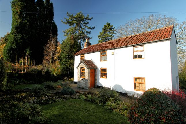 Thumbnail Cottage for sale in Gloucester Road, Almondsbury, Bristol