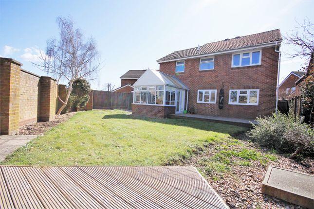 Thumbnail Detached house to rent in Forties Close, Stubbington, Fareham