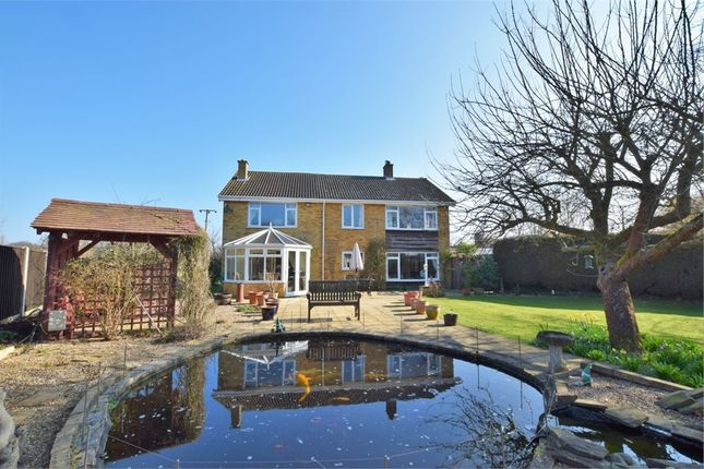 Thumbnail Detached house for sale in Quilters Green, Fordham, Colchester, Essex