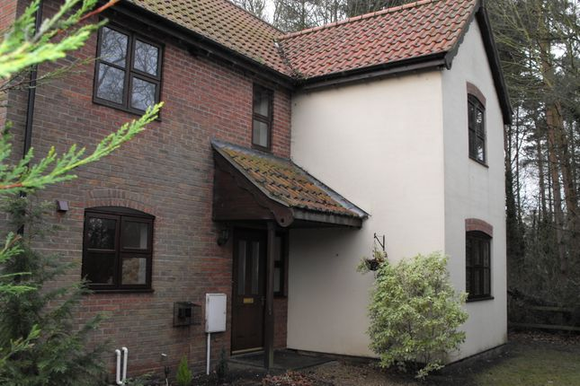 Thumbnail Detached house to rent in Woodfield Close, Shadingfield, Beccles