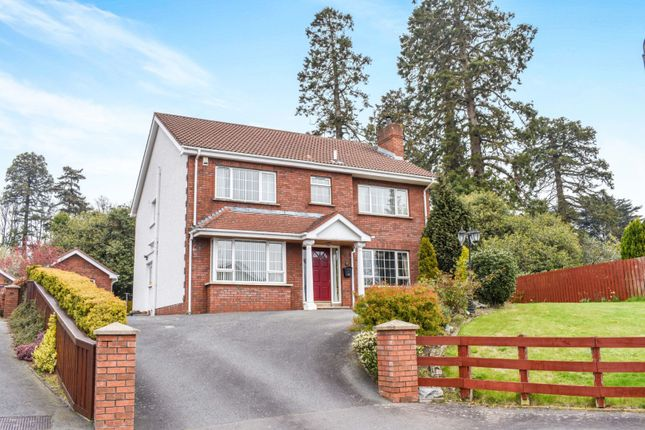 Thumbnail Detached house for sale in Hollywood Gardens, Newry
