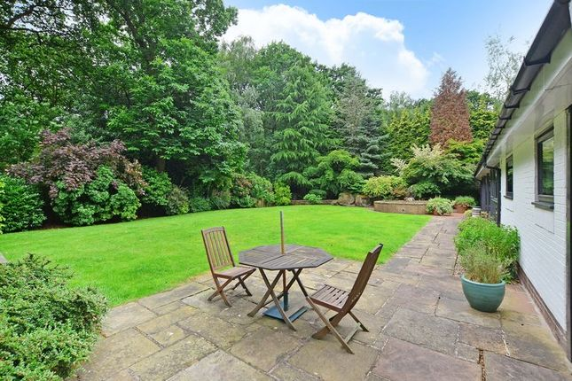 Rear Garden of Forest Edge, Whirlow, Sheffield S11