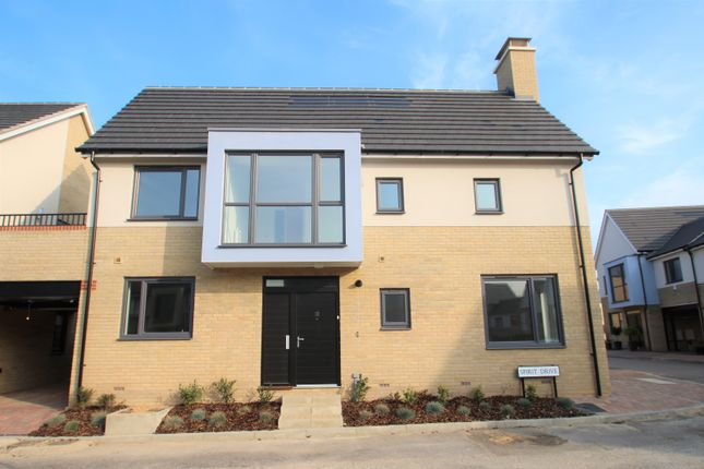 Thumbnail Semi-detached house to rent in Spirit Drive, Colchester