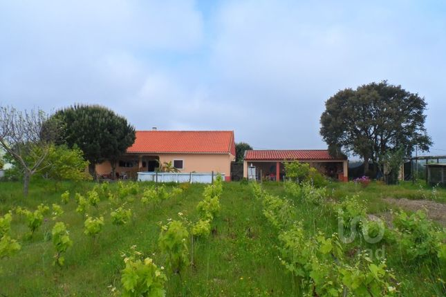 Thumbnail Detached house for sale in Bombarral E Vale Covo, Bombarral E Vale Covo, Bombarral