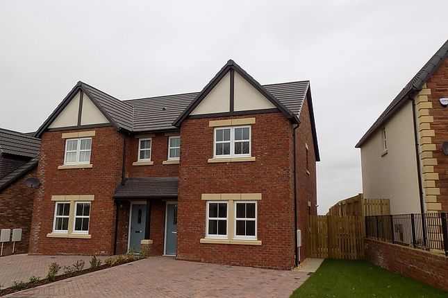 Thumbnail Semi-detached house to rent in Wampool Close, Thursby