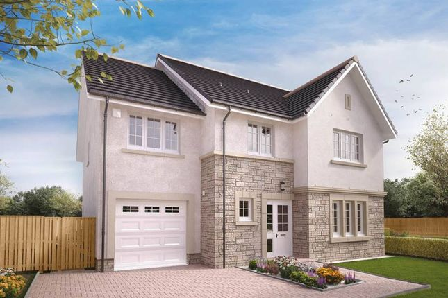 "Thumbnail Detached house for sale in ""Darroch"" at Balgownie Road, Bridge Of Don, Aberdeen"