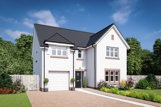 "Thumbnail Detached house for sale in ""The Colville"" at Edinburgh Road, Belhaven, Dunbar"