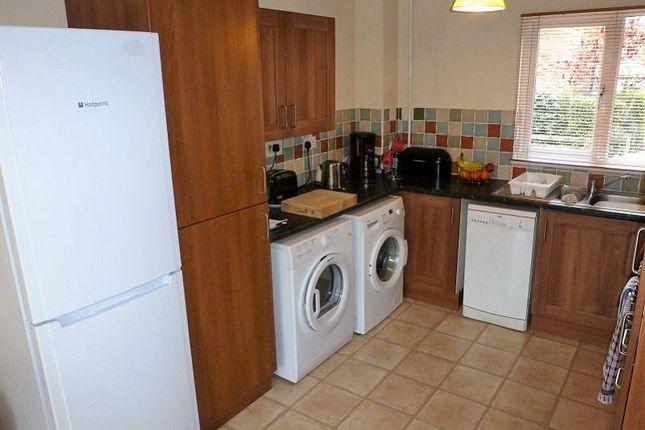 Thumbnail Detached house to rent in Long Pasture, Werrington, Peterborough
