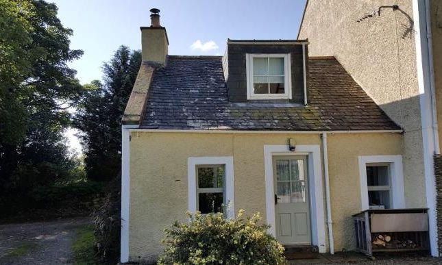 Thumbnail Semi-detached house to rent in Kirkpatrick Durham, Castle Douglas