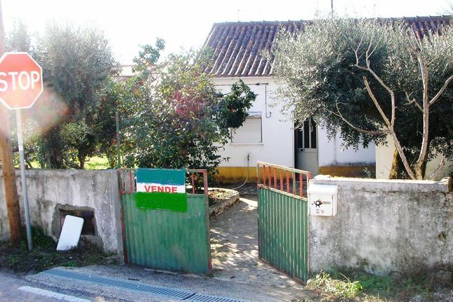 Tomar Homes For Sale