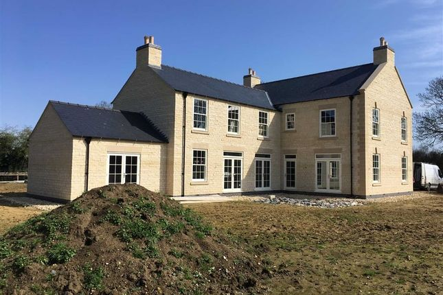 Thumbnail Detached house for sale in Mill Lane, Owmby By Spital