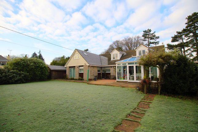 Thumbnail Bungalow to rent in Ash Green Road, Ash Green, Aldershot