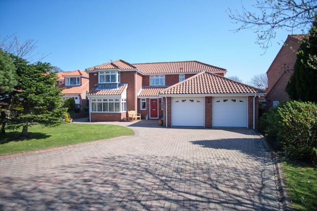 Thumbnail Detached house for sale in Lodgeside Meadow, Sunderland, Tyne And Wear