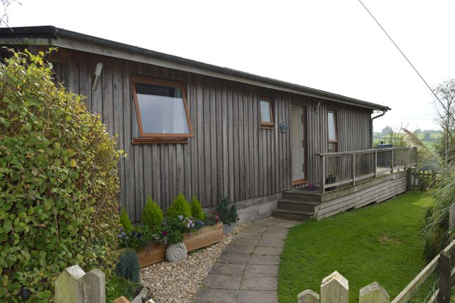 Thumbnail Property to rent in Hawkchurch, Axminster