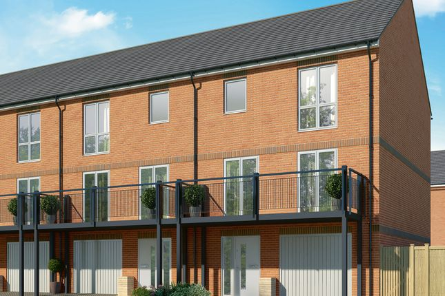 """Thumbnail Terraced house for sale in """"The Maple"""" at Connolly Way, Chichester"""