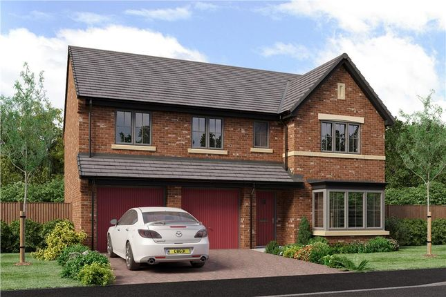 "Thumbnail Detached house for sale in ""The Buttermere"" at School Aycliffe, Newton Aycliffe"