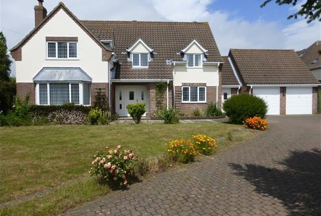 Thumbnail Property to rent in Norwich Road, Ludham, Great Yarmouth