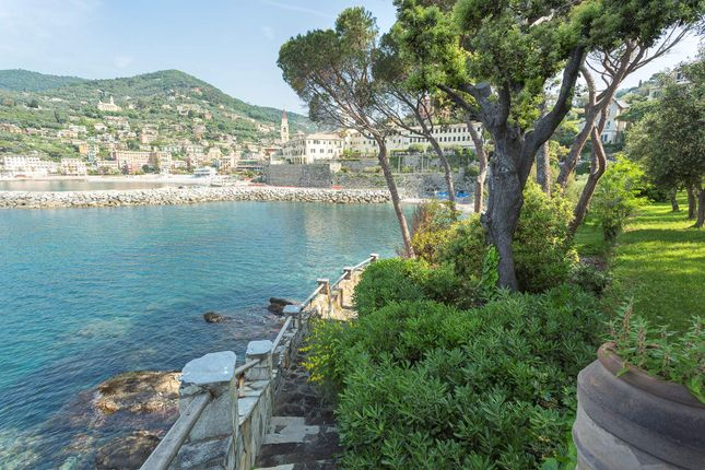 Property For Sale In Recco Italy