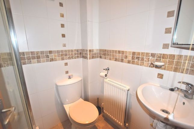 Downstairs/Shower Room