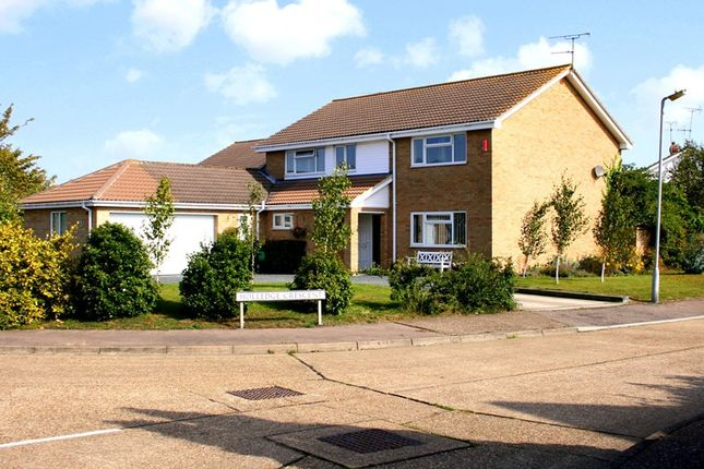 Thumbnail Detached house for sale in Skyrmans Fee, Kirby Cross, Frinton-On-Sea