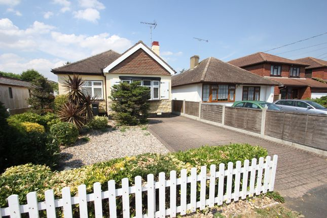 Thumbnail Detached bungalow for sale in Albert Road, Ashingdon, Rochford